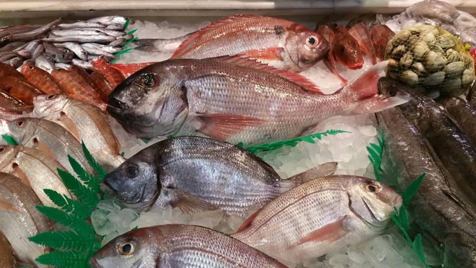 pescado-fresco-lonja-asturias